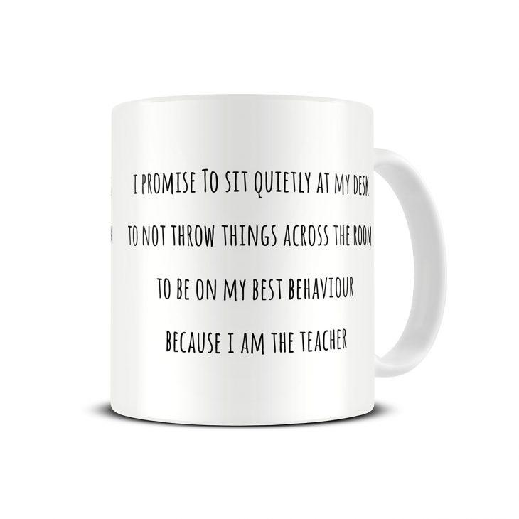 funny-teacher-mug
