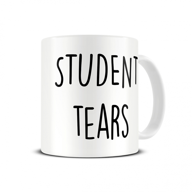 student-tears-teacher-gift-mug